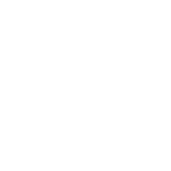icon-confidential