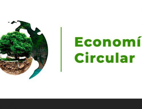 Economía lineal Vs circular